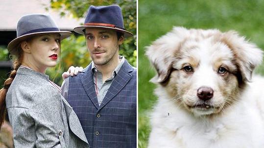 Mnaželé Heřmánkovi si pořídili rozkošné štěně s modrýma očima.