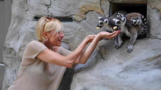 S roztomilými lemury si zpěvačka rozuměla od chvíle, kdy vytasila banány.