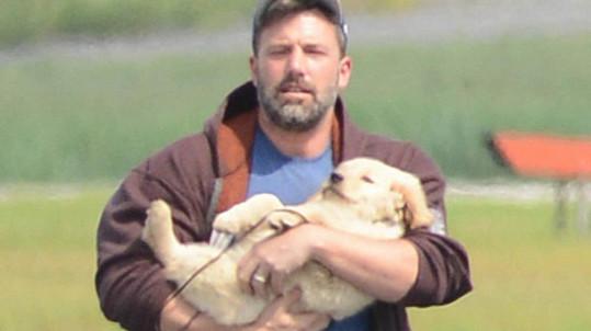 Ben Affleck jako psí táta