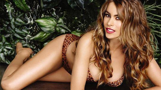 Sofia Vergara by se ráda opět stala matkou.