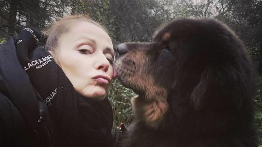 Pavla Vitázková adoptovala obřího psa.