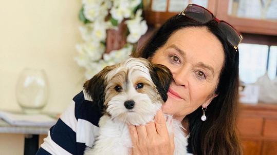 Hana Gregorová si pořídila štěně.