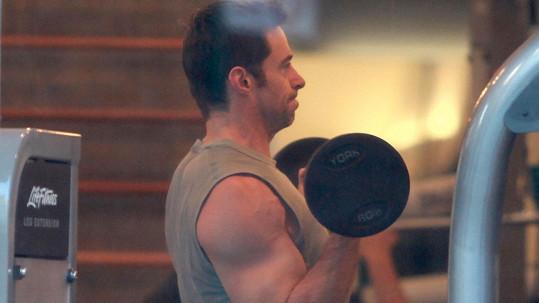 Hugh Jackman se pyšní svalnatou postavou.