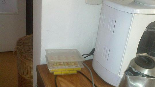 Rychtář všude v domě přeštípal ikabely. I od rychlovarné konvice a myčky.