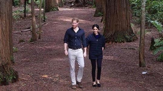 Vévoda a vévodkyně ze Sussexu Harry a Meghan