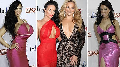 Barvám, výstřihům a nevkusu se na předávání AVN Awards meze nekladly.