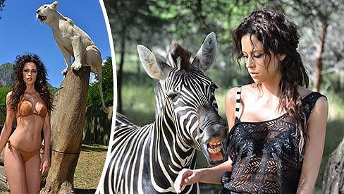 To muselo bolet! Modelku během focení hryzla zebra.