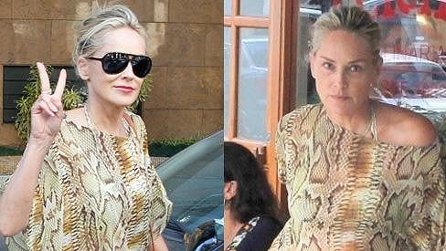 Sharon Stone téměř nestárne.