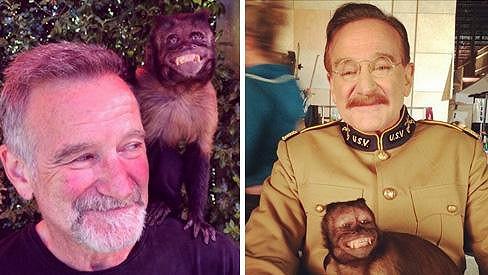 Robin Williams si Crystal velmi oblíbil.