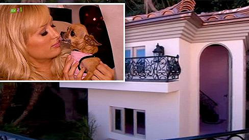 Paris Hilton svého psího miláčka zbožňuje.