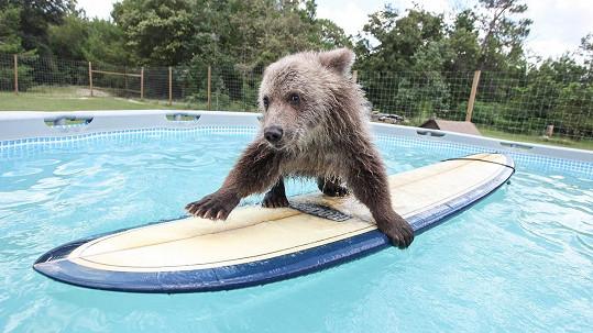 Bruiser na surfu působí jako profík.