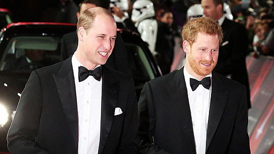 William a Harry nechali partnerky doma.