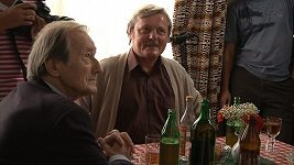 Radoslav Brzobohatý - hraní