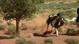 Johnny Depp spadnul při natáčení z koně
