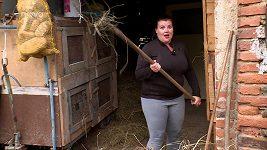 Výměna manželek, farma