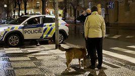 Policie našla majitele psa, který napadl pejska Báry Mottlové.