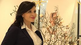 Andrea Kalivodová - online koncerty